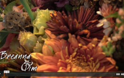 Breanna & Tim's Saratoga National Wedding Video