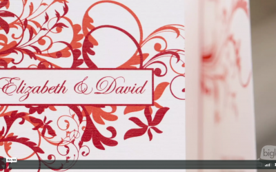 Beth and David's Otesaga Wedding Video