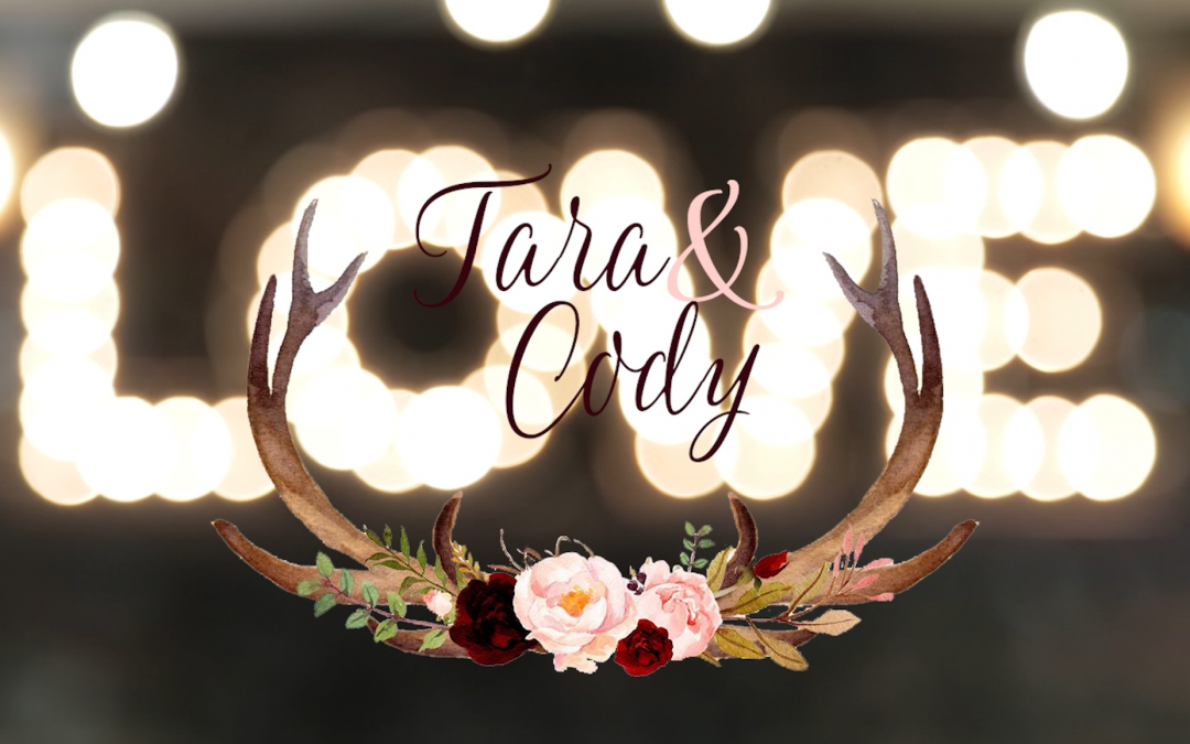 Tara and Cody's Old Daley on Crooked Lake Wedding Video